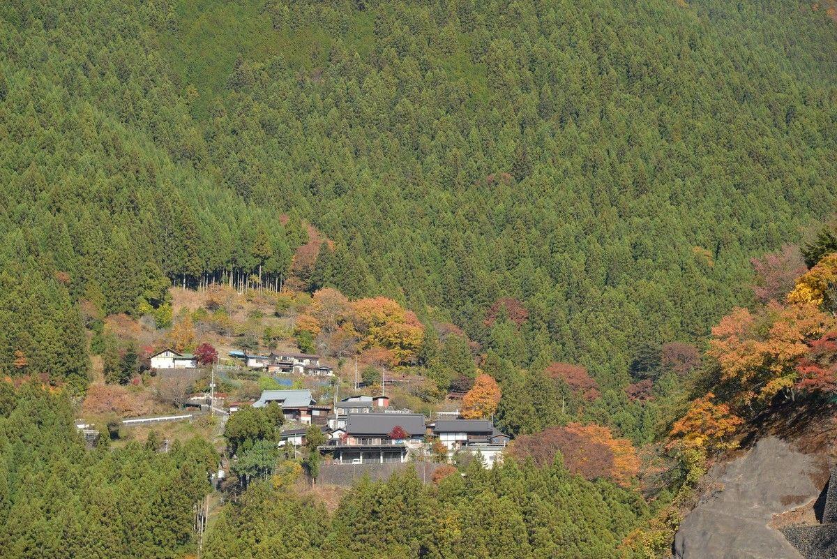 Hinohara village & Okutama town